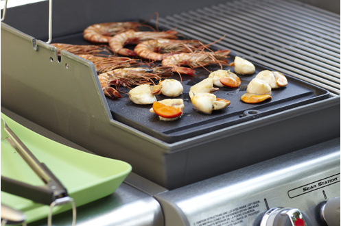 plancha barbecue weber recette top plancha. Black Bedroom Furniture Sets. Home Design Ideas