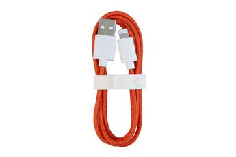Câble USB Citroen AMI cable USB A vers Lightning Orange