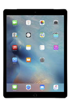 iPad iPad Pro Wi-Fi+Cellular 128Go Gris sidéral Apple