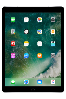 Apple IPAD PRO 12.9 WIFI+CELLULAR 64 GO GRIS SIDERAL