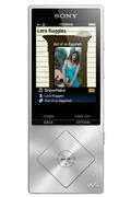 Sony NWZA15S.CEW METAL