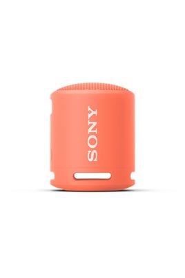 Enceinte Portable SRS-XB13