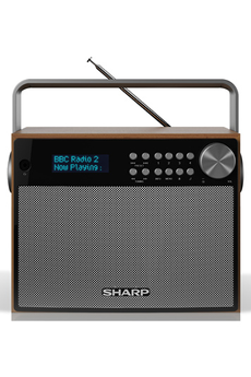 Radio Sharp DR-P350
