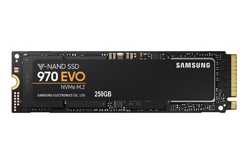 SSD interne SSD 970 EVO 250GB Samsung