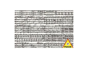 Puzzles Piatnik Puzzle 1000 pièces - partition musicale