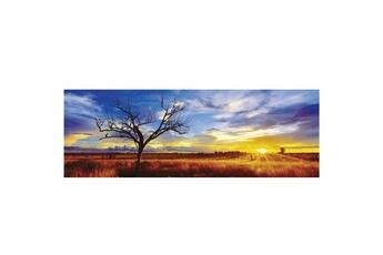 Puzzles Schmidt Puzzle 1000 pièces panoramique Mark Gray : Désert Oak, Australie