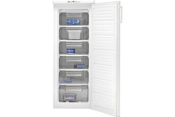 Tout le choix darty en cong lateur armoire cong lateur vertical darty - Congelateur armoire beko fne20921 ...
