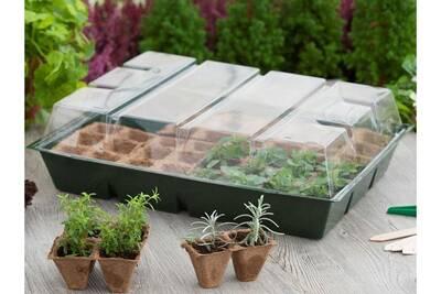 Mini-serre de culture en plastique souple 48 alvéoles avec tourbe