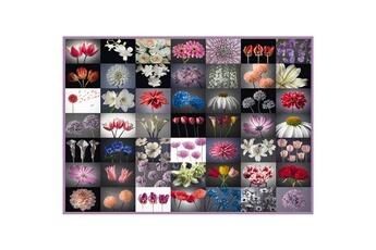 Puzzles Schmidt Puzzle 2000 pièces : pensée fleurie
