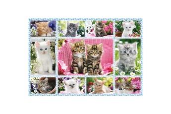 Puzzles Schmidt Puzzle 100 pièces : chatons