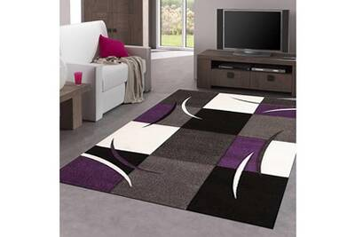Tapis salon diamond comma violet 120 x 170 cm tapis de salon moderne design  par jadorel