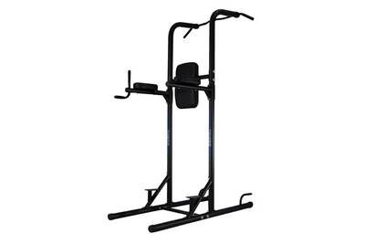 Banc De Musculation Ion Fitness Chaise Romaine Poignee Ample Stable Fi510 Power Tower