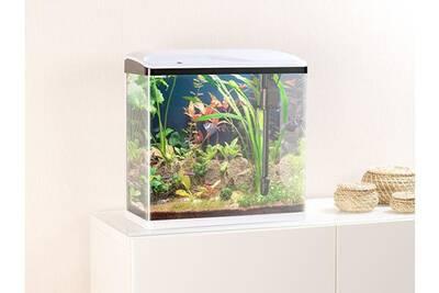 Nichoir Perchoir Sweetypet Aquarium Complet Avec Pompe Filtre Et