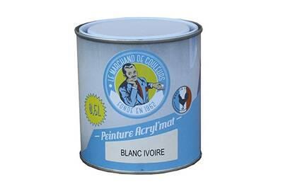 Peinture Acrylique Murs Et Plafonds Mat Blanc Ivoire 0 5 L Onip