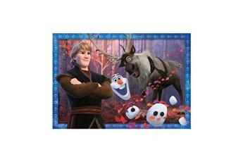 Puzzles RAVENSBURGER Puzzles 2x24 p - vers des contr es glac es / disney la reine des neiges 2