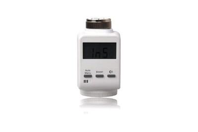 Thermostat et programmateur de chauffage Blanx Blaupunkt thermostat de radiateur connecté pour q 3000
