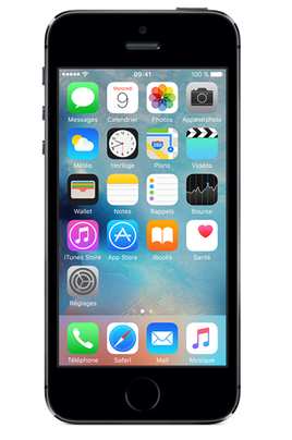 iPhone reconditionné IPHONE 5S 16GO GRIS SIDERAL RECONDITIONNE Apple
