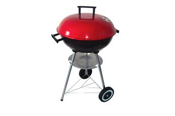 Barbecue SUNNY 2 Proline