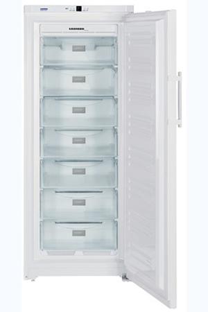 congélateur armoire liebherr gn3613 blanc | darty
