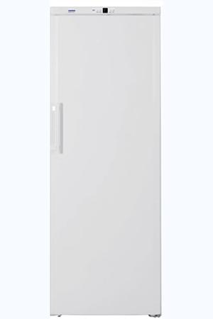 congélateur armoire liebherr gn4113 blanc | darty