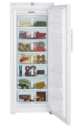 Congélateur armoire GNP3666 BLANC Liebherr
