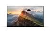 Sony KD55A1 OLED 4K photo 2