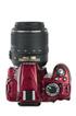 Nikon D3100 ROUGE+18-55 VR photo 5