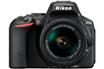 Reflex D5500 + AF-P DX NIKKOR 18-55 mm VR Nikon