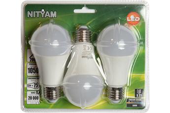 Ampoule LED Nityam GLOBE DEPOLIE E27 12W (X3)