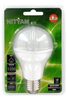 Ampoule LED STAND D E27 15W Nityam