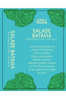 Potager d'intérieur Pret @ Pousser Capsule Prêt à Pousser - Salade Batavia