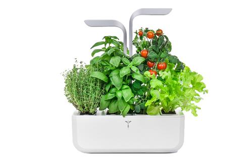 Carré potager, pots et jardiniére Grow Camp | Darty