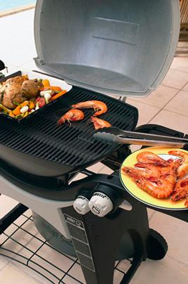 barbecue americain weber q 300 gaz 3272834. Black Bedroom Furniture Sets. Home Design Ideas