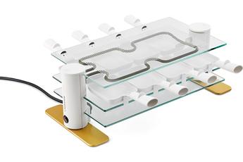 Raclette Lagrange 8 Transparence 009 803