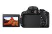 Canon EOS 700D + 18-55 IS STM + Sigma 70-300mm F4-5.6 DG Macro pour Canon photo 14