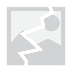 Accessoires literie Sigma Chauffage résistance sigma 240w pour matelas lit à eau